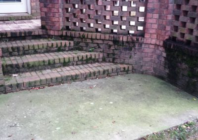 Brick/Concrete Before Cleaning